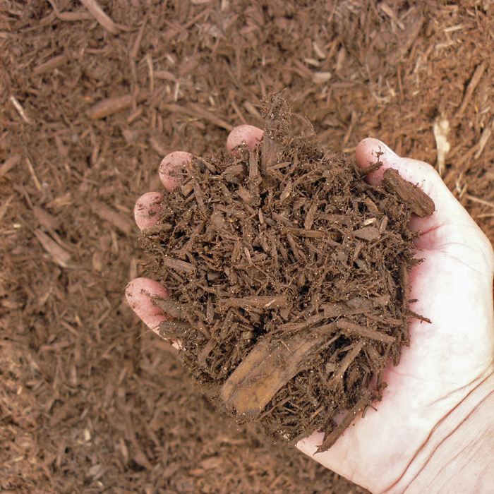 Shredded Chocolate Cedar Mulch